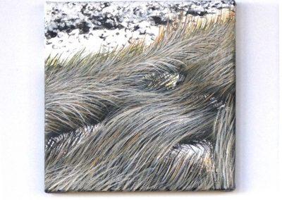 JN5 River Reeds 2